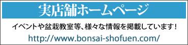 小品盆栽専門店湘風園の実店舗のホームページ
